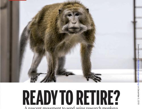 Prêts pour la retraite ?